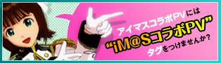 img7_banner.jpg