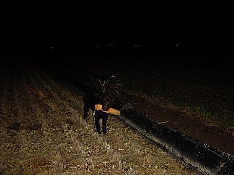 2005 10 06 夜練-2.JPG