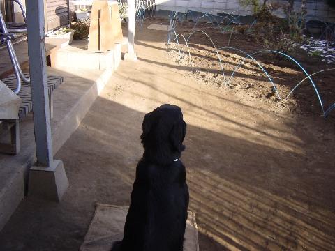 2005 12 08 ターゲットTOP