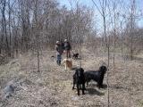 2006 04 09 基地散策-1.jpg