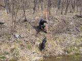2007 03 04 救助犬出動発見
