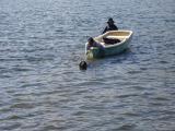 種目3ボートを引くパール.JPG