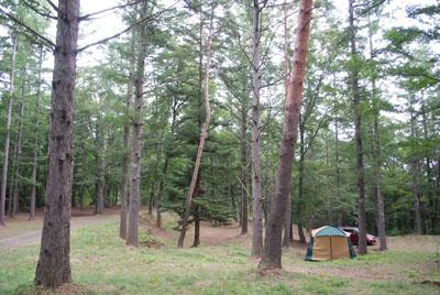 森の中のテント