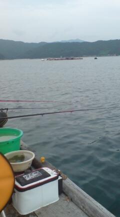 20090713084912魚釣り