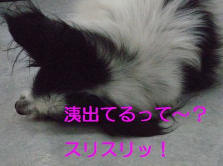 a3_20090314222619.jpg