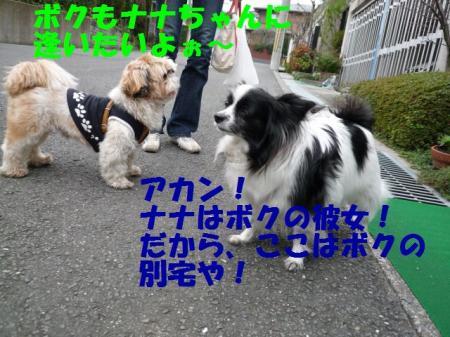 b4_20090329000112.jpg
