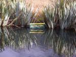 ミラー湖看板