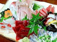 sashimori-1.jpg