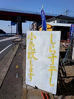 shirasu_1.jpg