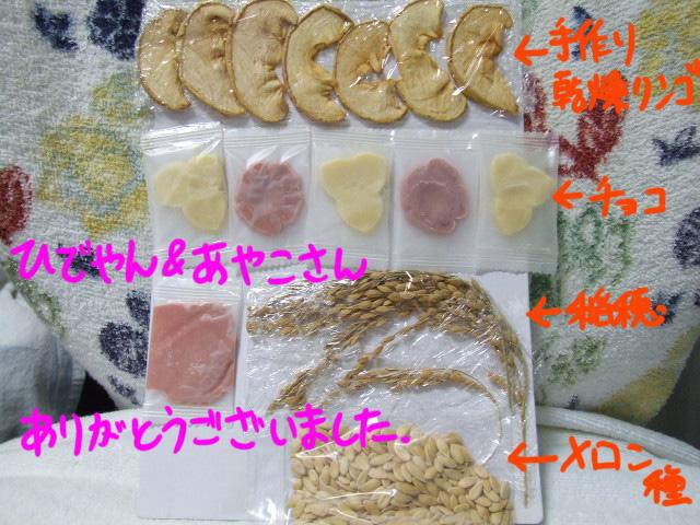 DSCF090907a9368.jpg