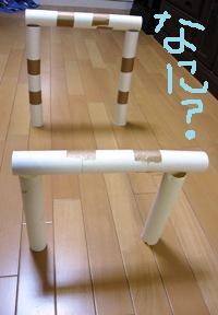 aji0521-2.jpg