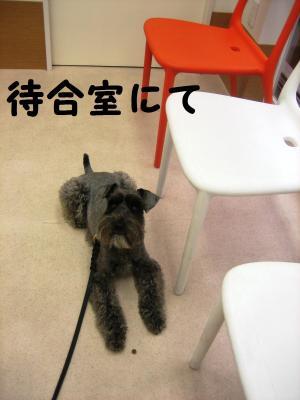 byouin0402-1_.jpg
