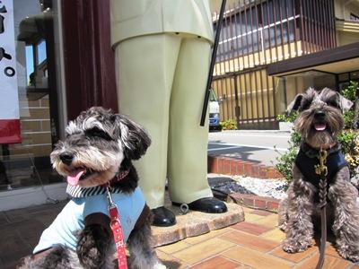 dogcafe0418-6.jpg