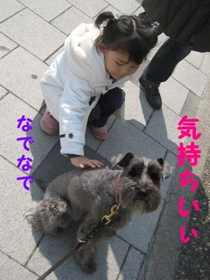 hanami0329-7.jpg