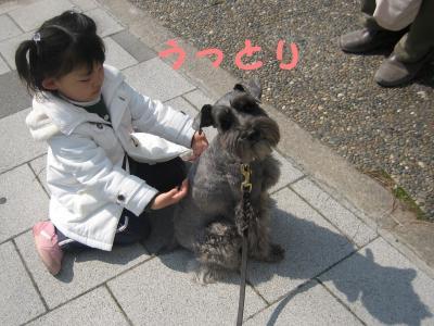 hanami0329-8_.jpg