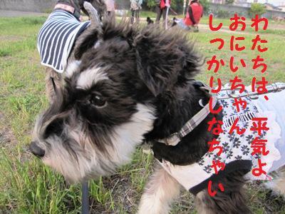 kenkou0511-4.jpg
