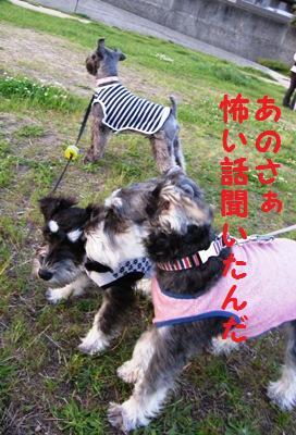 kenkou0511-5.jpg
