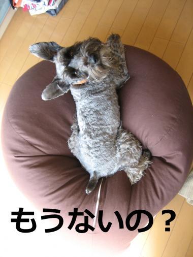 naino_.jpg