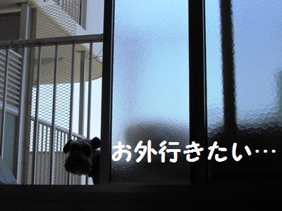 oyasumi0518-1.jpg