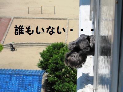oyasumi0518-2.jpg