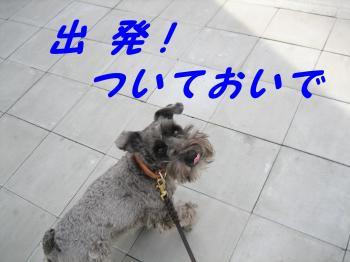 syuppatu_.jpg