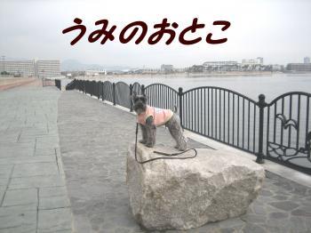 umino_.jpg