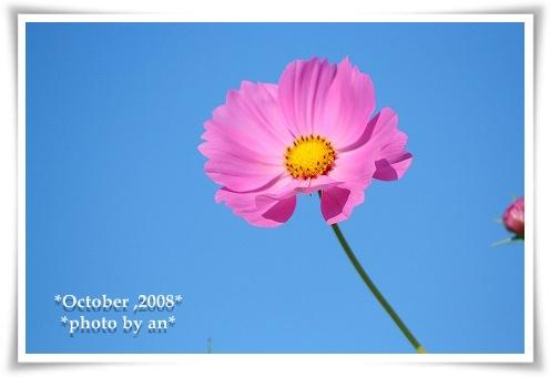 20081008_9325.jpg