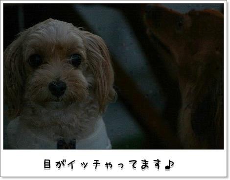 200810_1477.jpg