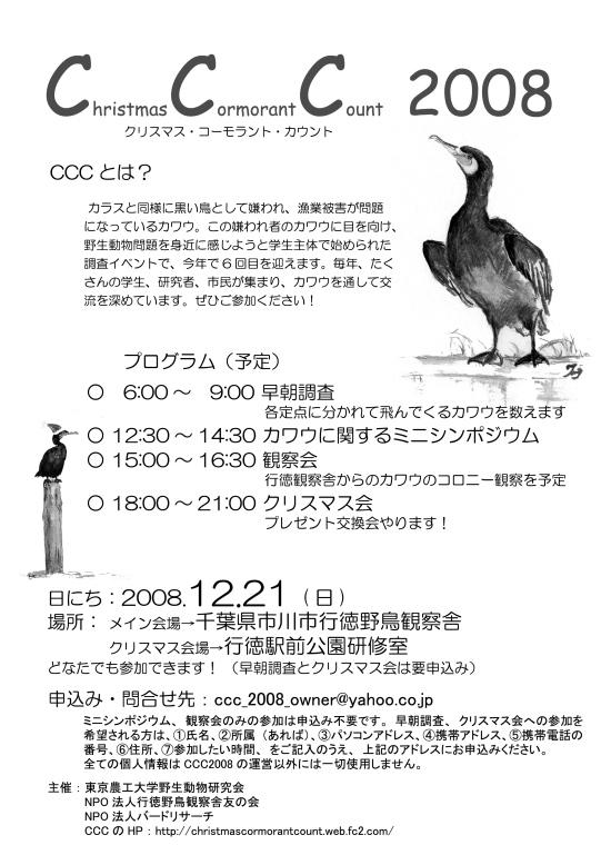 CCC2008flier.jpg