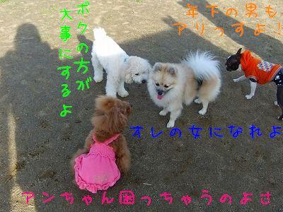 11.14お友達2