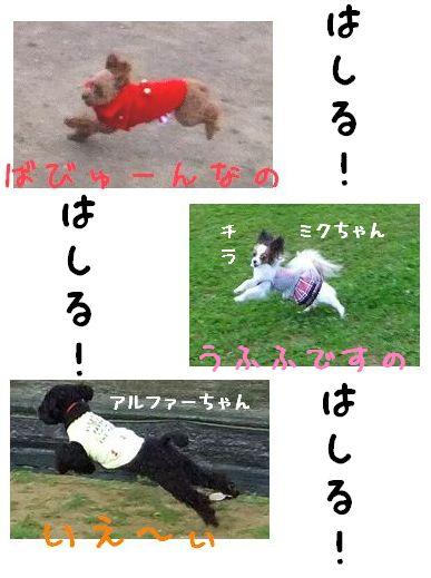 11.28走る!