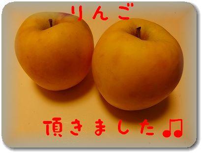 12.1りんご