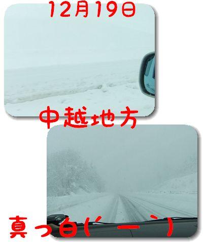 12.21冬