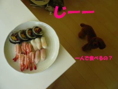 ララとお寿司