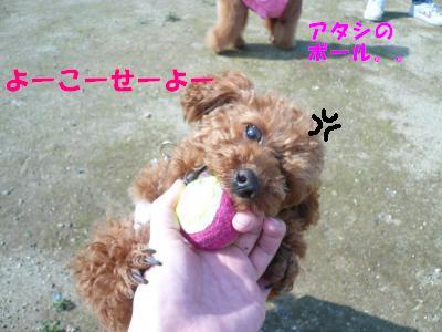 ららボール