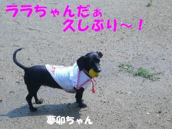 9.18夢卯ちゃん