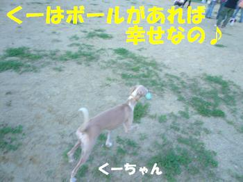 10.2くーちゃん