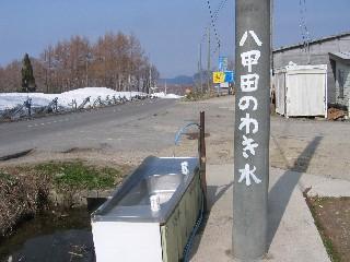 saku2.jpg