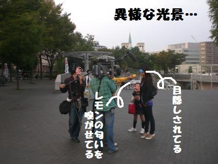 CIMG6166_20081018181401.jpg