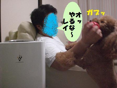 CIMG6256.jpg