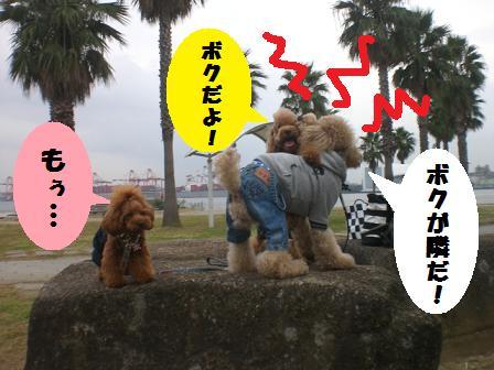 CIMG6368_20081024161022.jpg