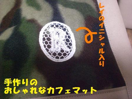 CIMG7673_20081122223341.jpg