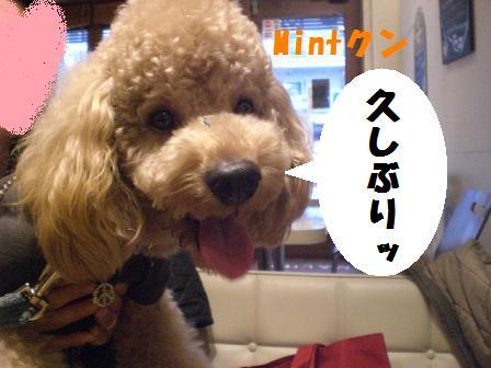 CIMG7932.jpg