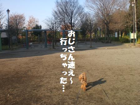 CIMG8389.jpg