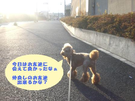 CIMG8404_20081216195314.jpg