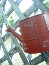 DSC49051.jpg