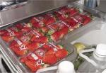 いちご冷蔵庫