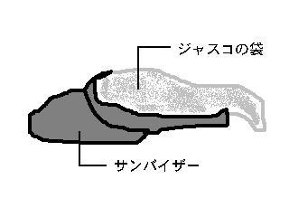 boushi.jpg
