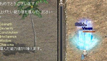 2008-10-30-13.jpg