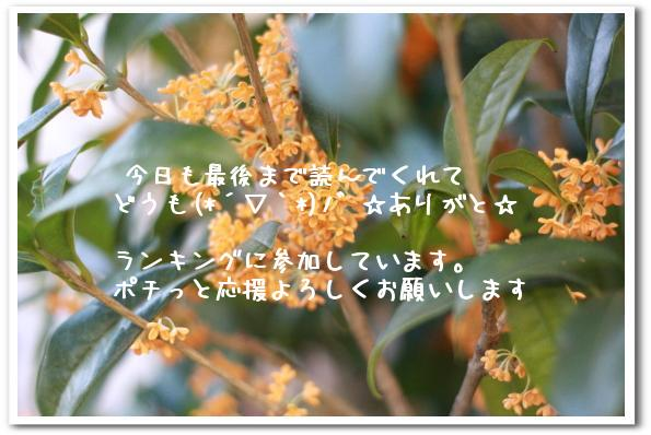 ria 006_1